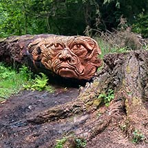 Chainsaw Carving Thommy Craggs