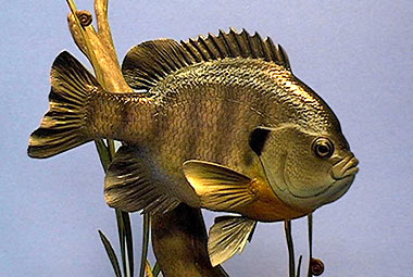 Fish Carving - Gig Goldstein